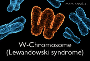 w-chromosome-lewandowski